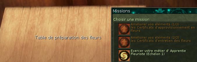 Fichier:Fleuriste-table.png