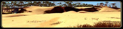 Eco desert.jpg