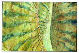 Br-vi-ka-pa-2000-05-23-2.jpg