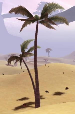 Desert olansi.jpg