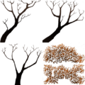 FY savantree branch SU.png