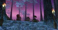 Camp ranger Bois Almati.jpg