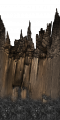FY burnedtree trunk SU.png
