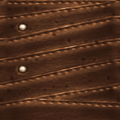 TR leather c3.png
