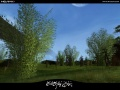 Screenshot Forest Flora 05.jpg