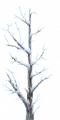 Fo giant tree branche Wi.png