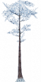 Fo giant tree Wi X L.png