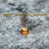 Debug Pumpkin