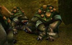 Un troupeau de Yelk