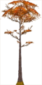 Fo giant tree Au X F.png