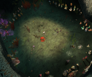 In the cave, the  Black Market takes place.