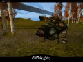 Screenshot Forest Fauna 05.jpg