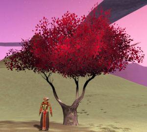 Savaniel-Autumn.jpg