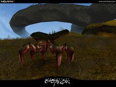 Screenshot Forest Fauna 04.jpg