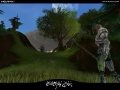 Screenshot Forest Various 03.jpg