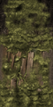 FY burnedtree trunk WI.png