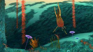 Underwater-Flora.jpg